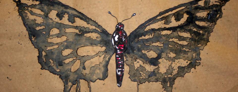 eddiebutterfly